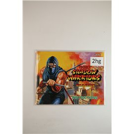Shadow Warriors: Ninja Gaiden