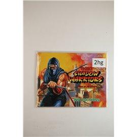 Shadow Warriors: Ninja Gaiden